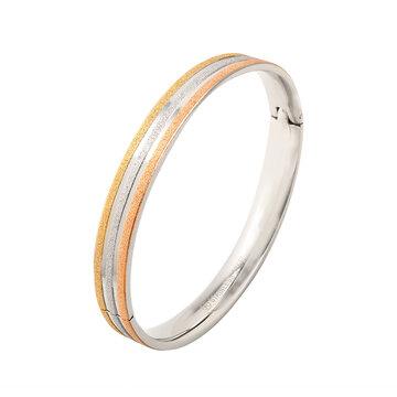 Stainless steel drie kleurige armband